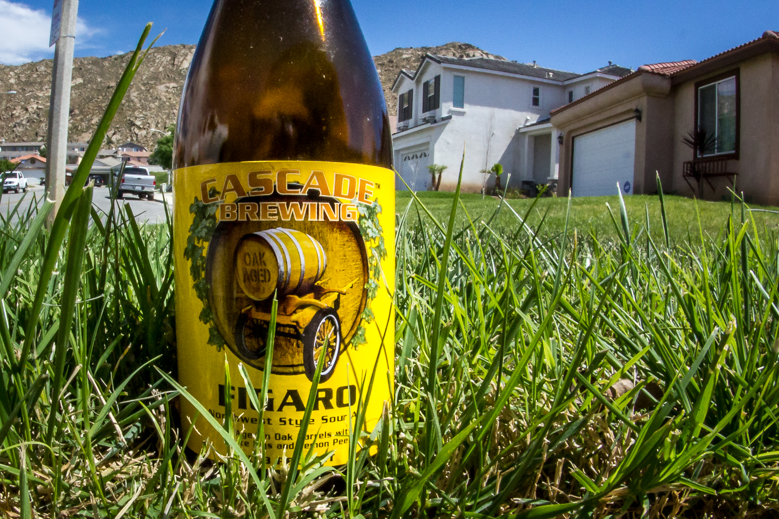 Figaro from Cascade Brewing